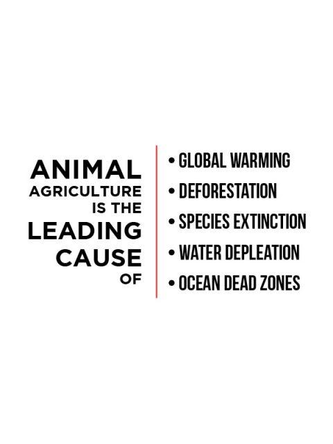 Animal Agriculture – Unisex Hoodie