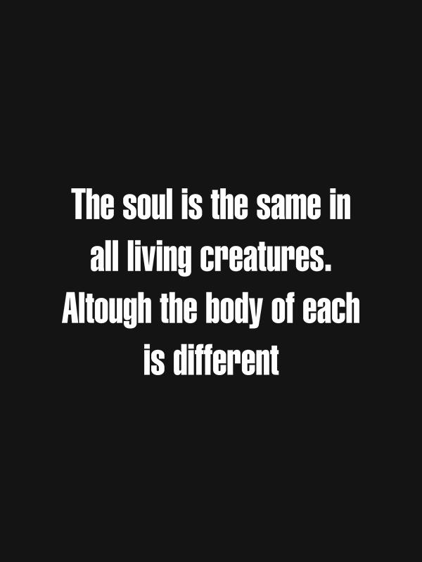 Soul is the Same – Vegan Tshirt