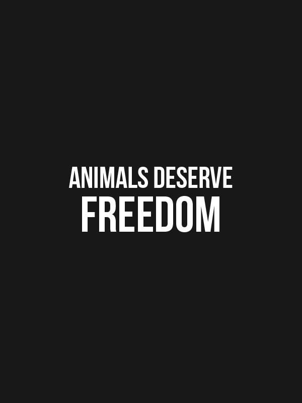 Animals Deserve Freedom – Women Tshirt