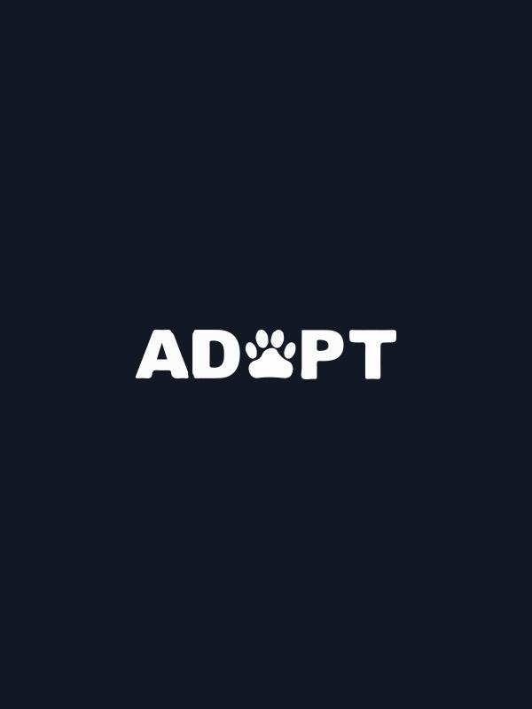 Adopt – Women Tshirt