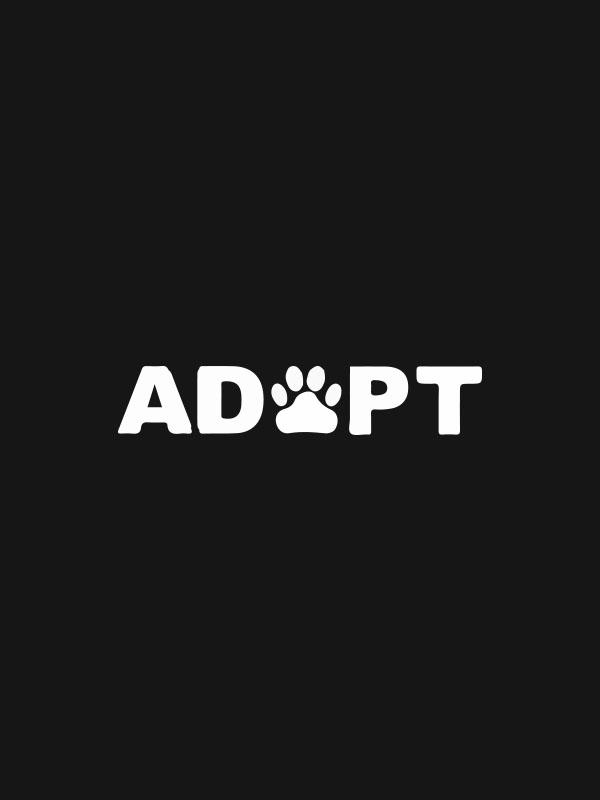 Adopt – Crop Top