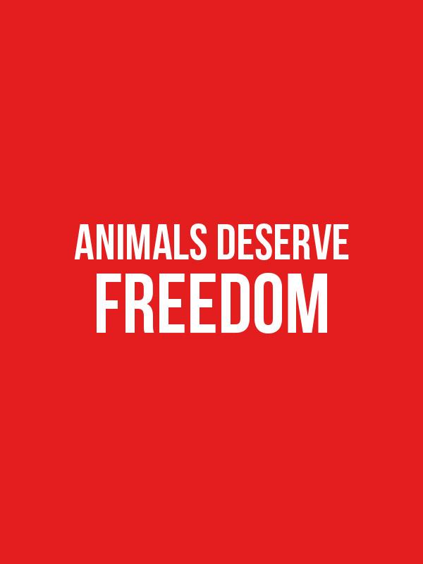 Animals Deserve Freedom- Unisex Hoodie