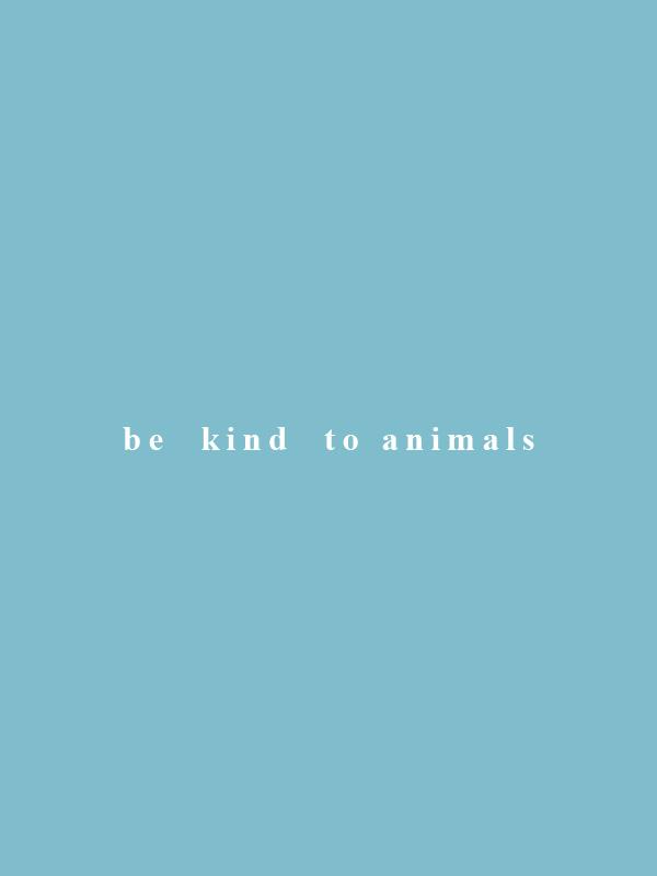 Be Kind to Animals – Vegan Tshirt